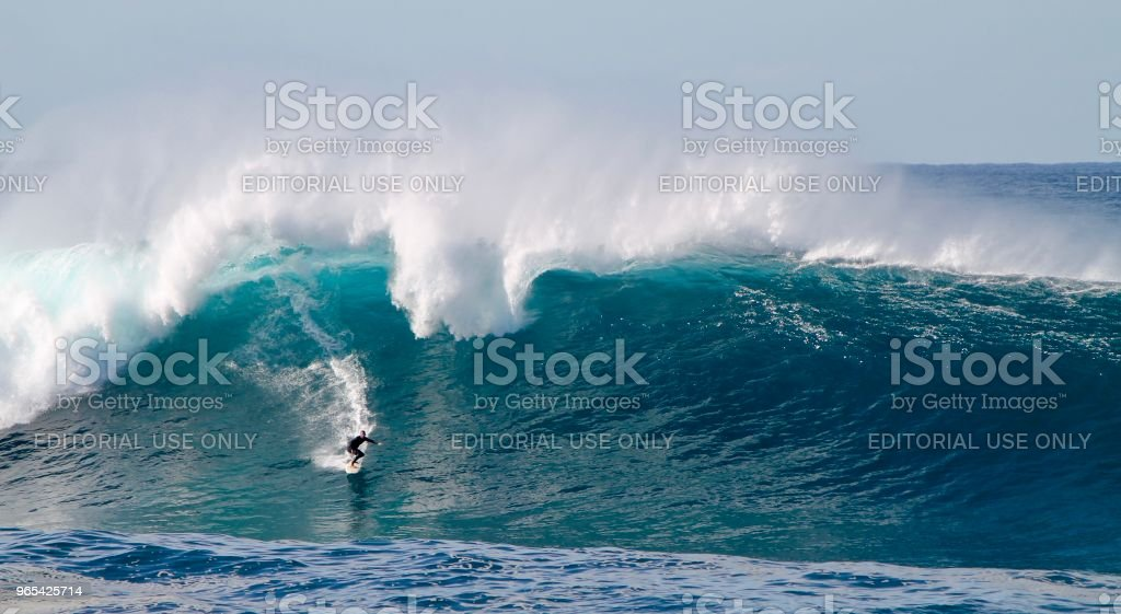 Big Wave Rider at coogee royalty-free stock photo