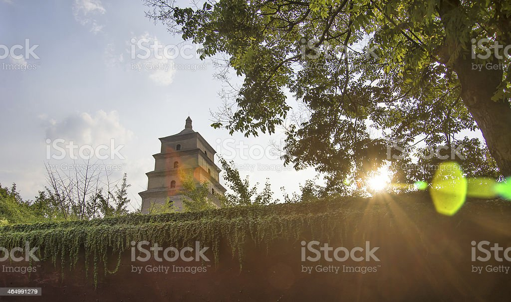 Big Wild Goose Pagoda xi an china stock photo