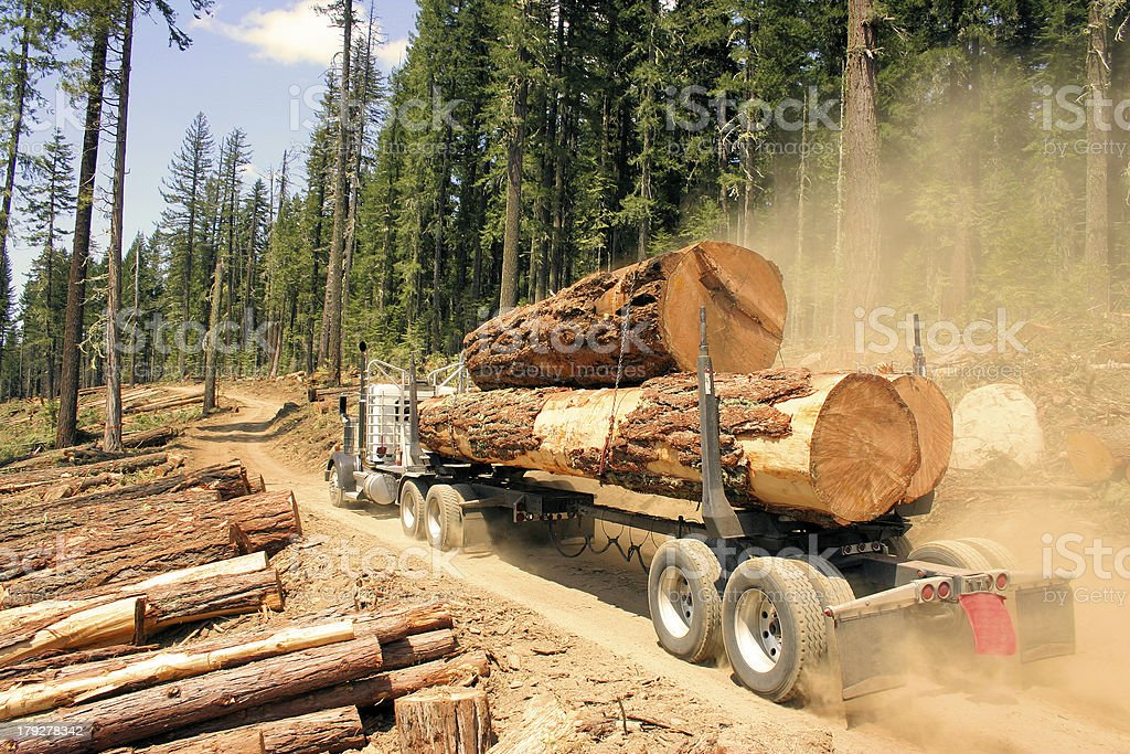 Big Wood stock photo
