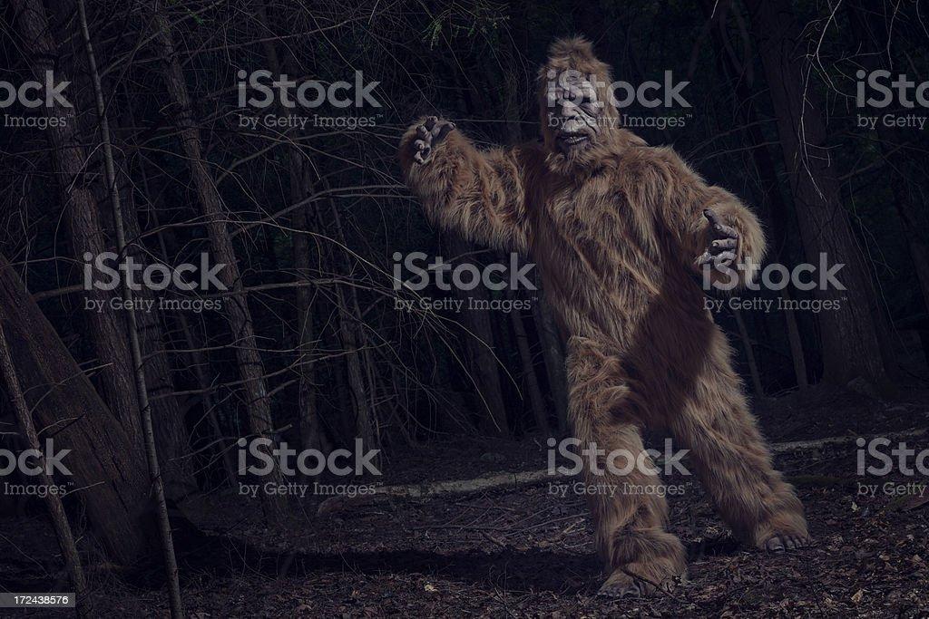 bigfoot chase stock photo