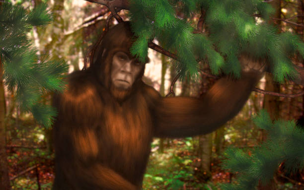 Bigfoot hiding in the woods during the day picture id1136663579?b=1&k=6&m=1136663579&s=612x612&w=0&h=mycxk put8mnpza5firyv4t3x2pkad0n4isgxwfosgc=