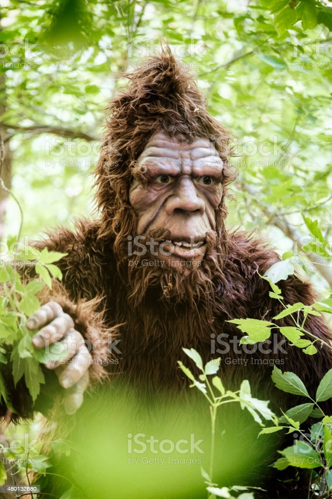 Bigfoot de follaje - foto de stock