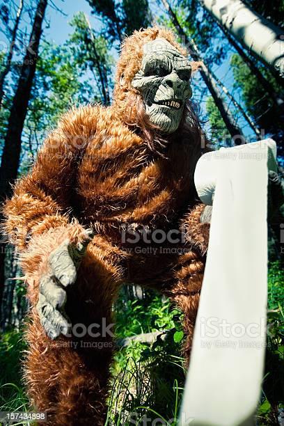 Bigfoot in the forest picture id157434898?b=1&k=6&m=157434898&s=612x612&h=iwcd35eix3dlqimuposqntfnxhjiacweplbki 0o7tg=