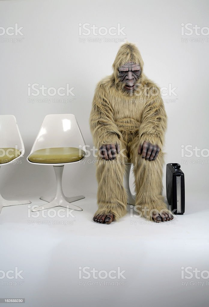 Bigfoot Interview royalty-free stock photo