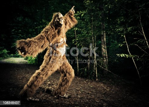 istock bigfoot making a disco dancing step on the road 108348437