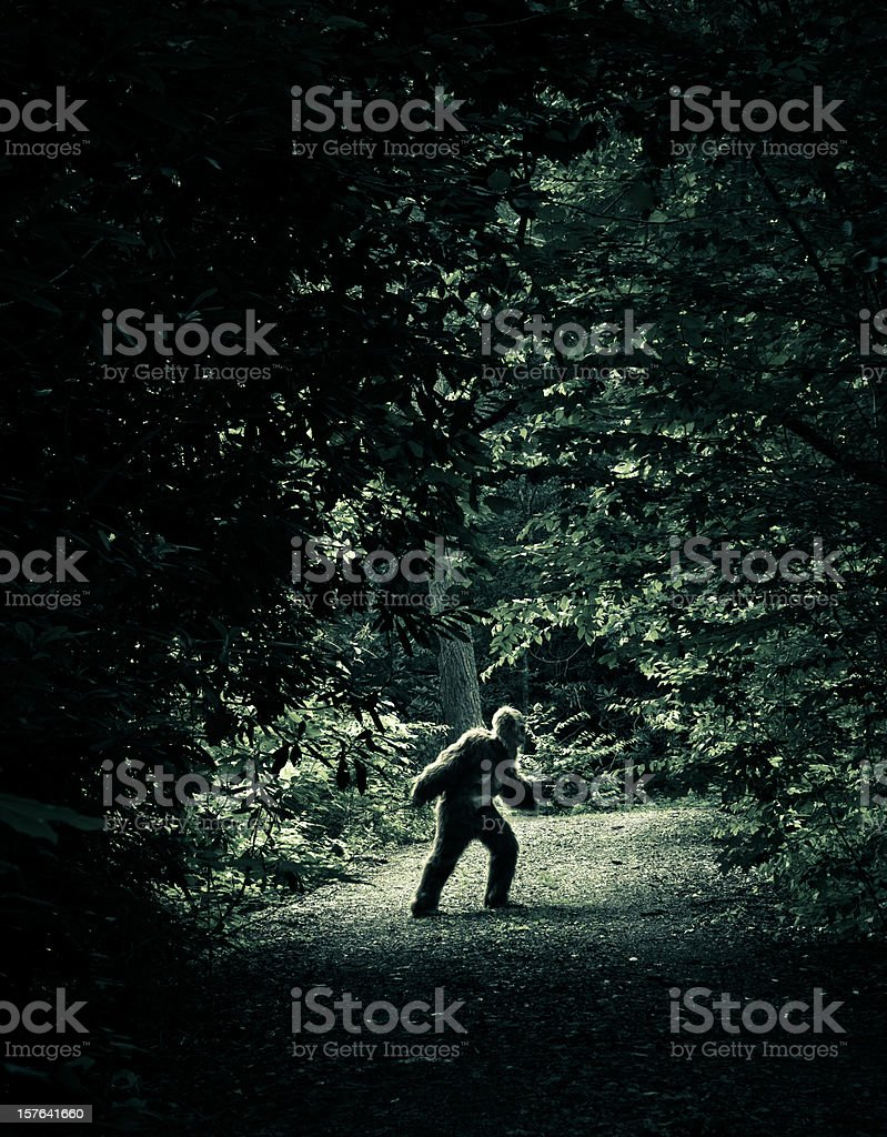 bigfoot making an appearance on a dirty road royalty-free stock photo