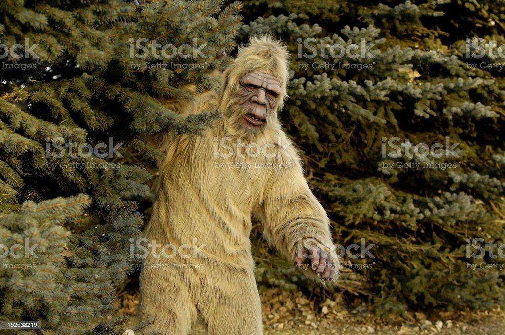 Bigfoot Outdoors stock photo