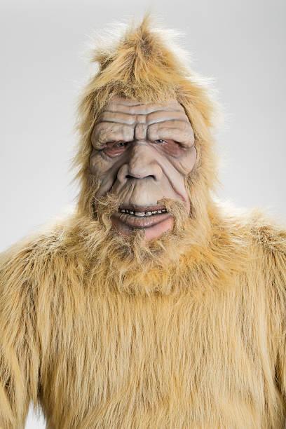 Bigfoot sasquatch picture id530705529?b=1&k=6&m=530705529&s=612x612&w=0&h=uqetiq9vymijsiwzcouhrwrsuc2jr2ubfjgijhxudr4=