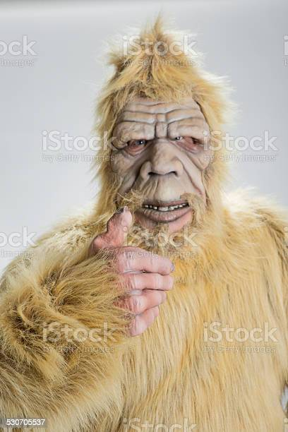 Bigfoot sasquatch picture id530705537?b=1&k=6&m=530705537&s=612x612&h=2au pmpmgurue9gcbrmnweootratdkvegfbsqyuyhha=