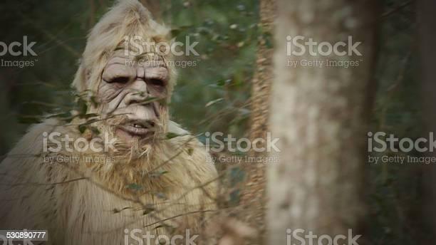 Bigfoot sasquatch picture id530890777?b=1&k=6&m=530890777&s=612x612&h=cr6yj3rfj9q8zcvgbldn zgmkr0dfy ajumw8bp1hrs=