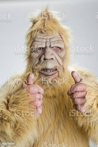 Bigfoot sasquatch thumbs up picture id530705541?b=1&k=6&m=530705541&s=612x612&h=3wqcrlca9ul6nhytgokg9xgkxamxs bmddmlx b5luw=
