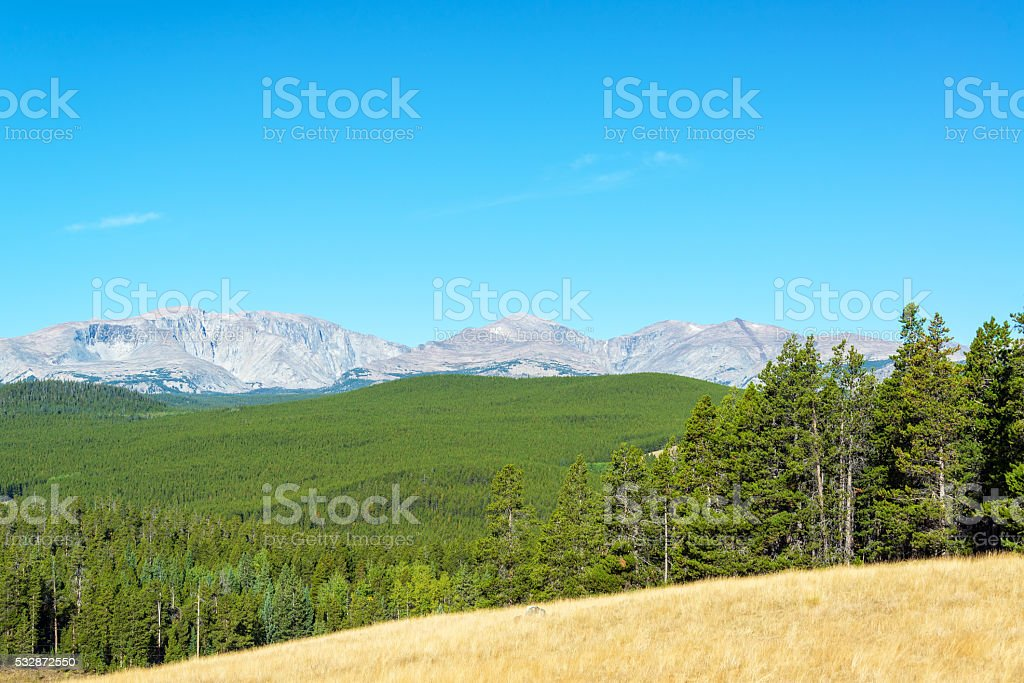 Bighorn Mountains and Forest stock photo