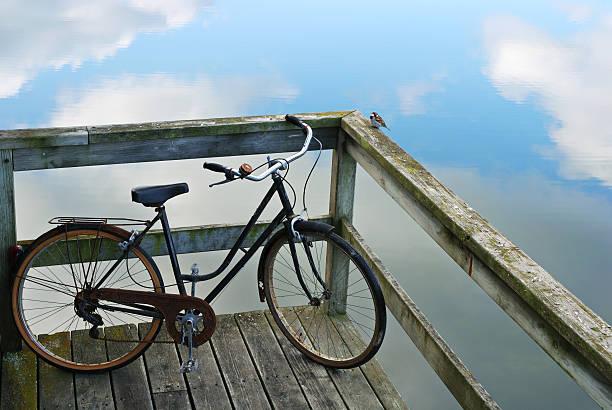 Bicicleta y bird - foto de stock