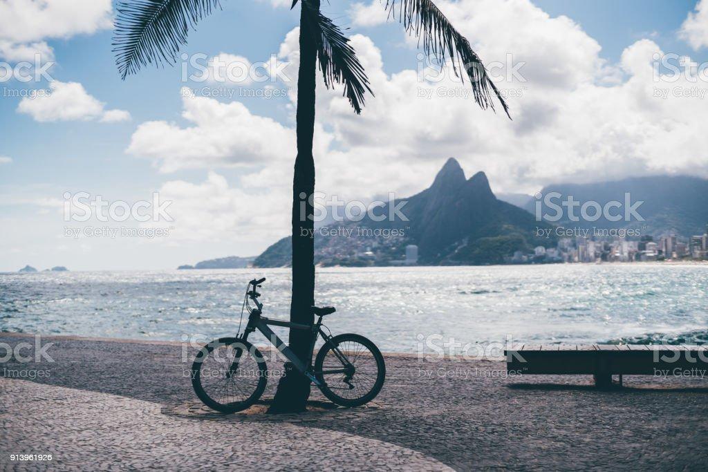 Fahrrad, Bank und Palm-Baum am Strand von Brasilien – Foto