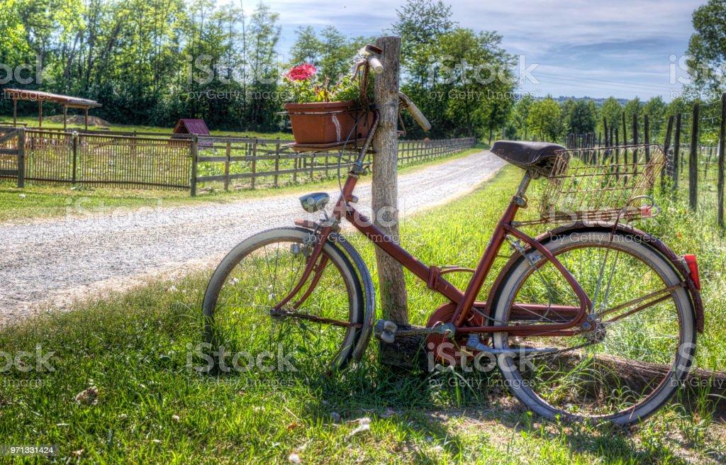 bike brings flowers in the country lane стоковое фото