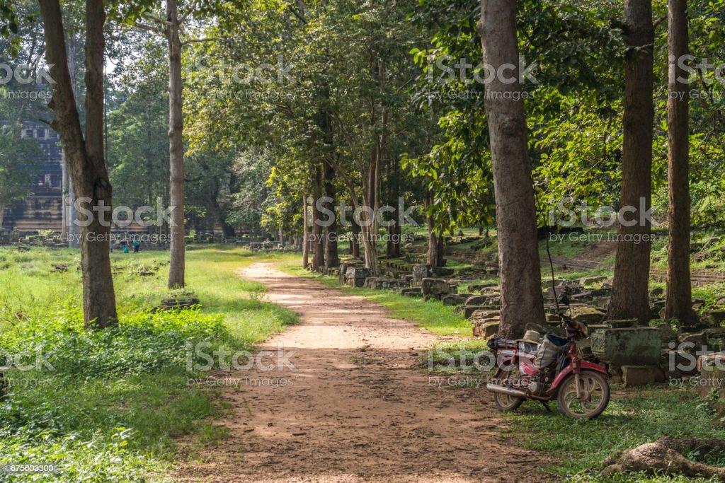 Vélo dans la Junge, Cambodge photo libre de droits