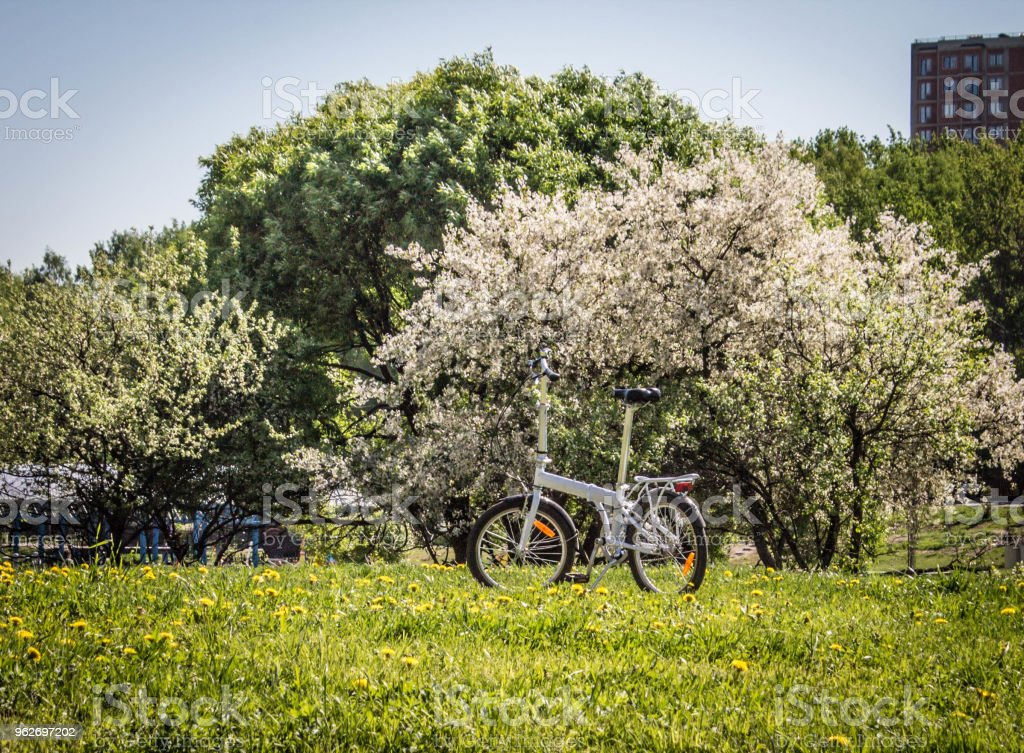 bike in the Park on the background of a flowering Apple tree stock photo