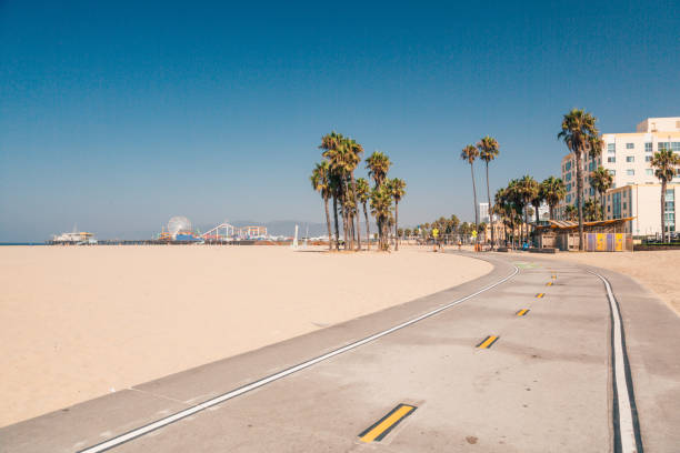 bike lane down the venice beach in la. - los angeles стоковые фото и изображения