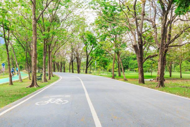 fahrrad in der park lane - fahrradwege stock-fotos und bilder