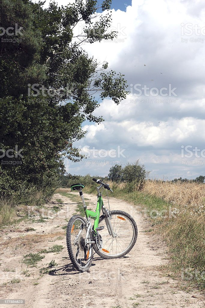 Bike on a forest road royalty-free stock photo