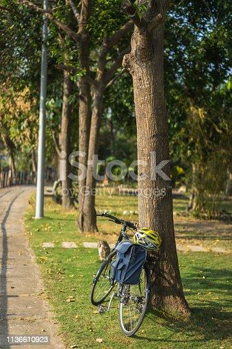 Bike on the path
