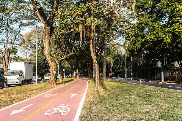 bike path in the streets of sao paulo, brazil (brasil) - fahrradwege stock-fotos und bilder