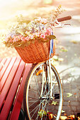 Bike with basket of spring flowers in park near bench in sunlight in sunset or sunrise. Beginning of new season of discounts.