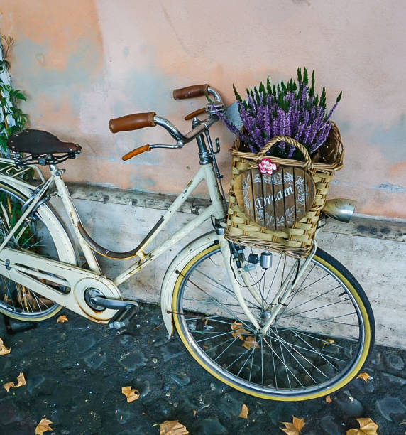 Bike with Dream Basket filled with Lavender stock photo