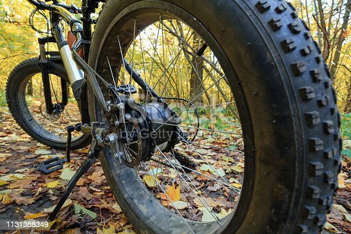 Bike with electric motor and thick wheels in the autumn forest. Sports hobby.