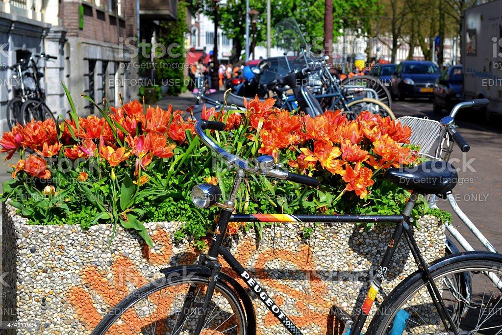 Bicicleta com flores. - foto de acervo