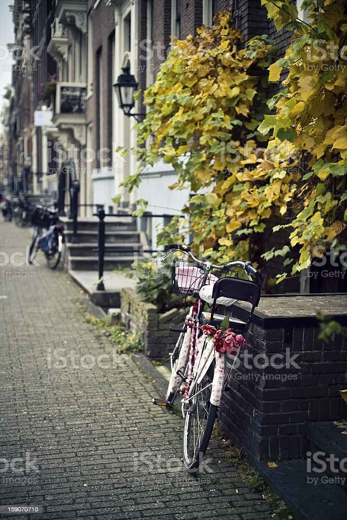 Bike with tulips royalty-free stock photo