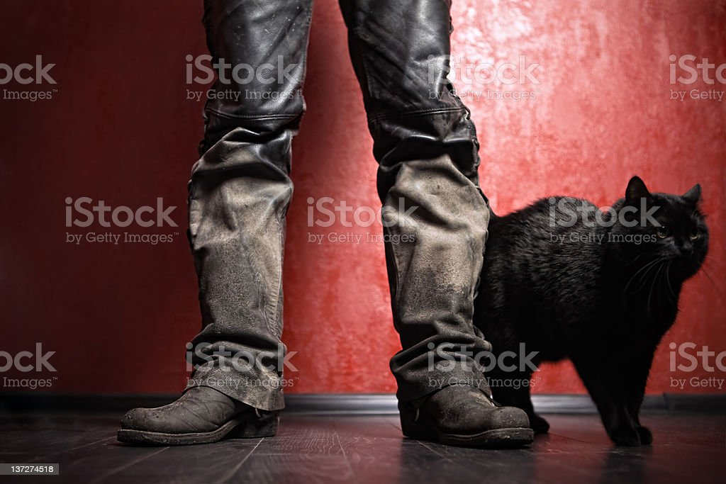 Biker and his cat royalty-free stock photo