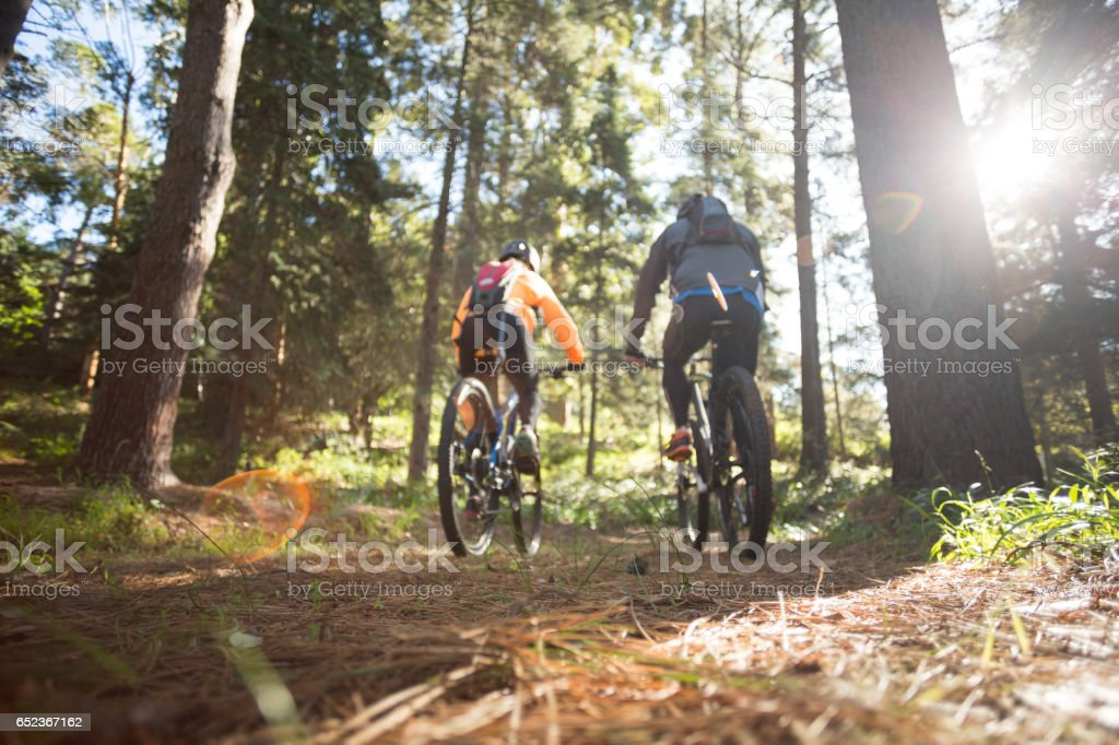 Biker couple riding mountain bike in the forest stock photo