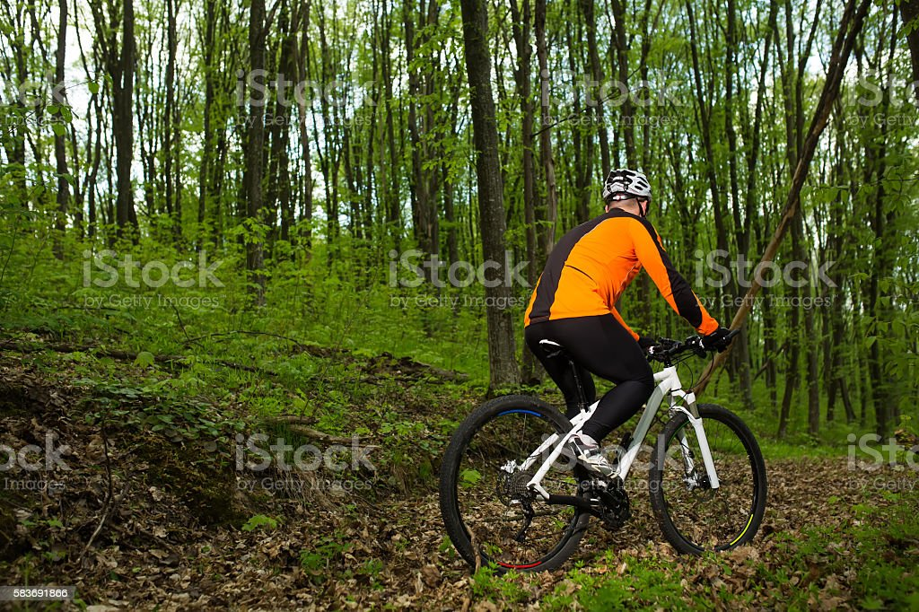 Biker on the forest road stock photo