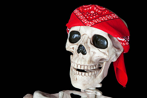 Biker Skeleton stock photo