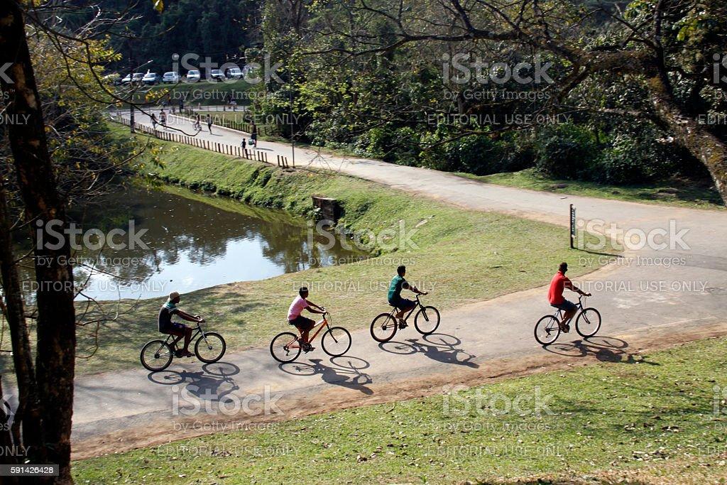 bikers in Horto Florestal (garden forest) - São Paulo stock photo