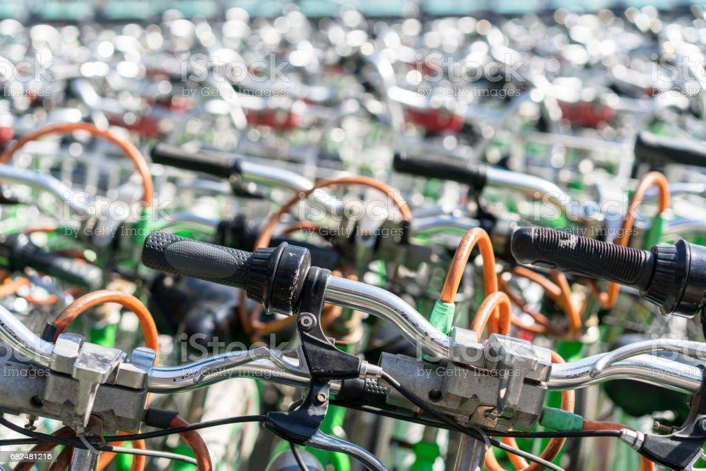 bikes for rental stock photo