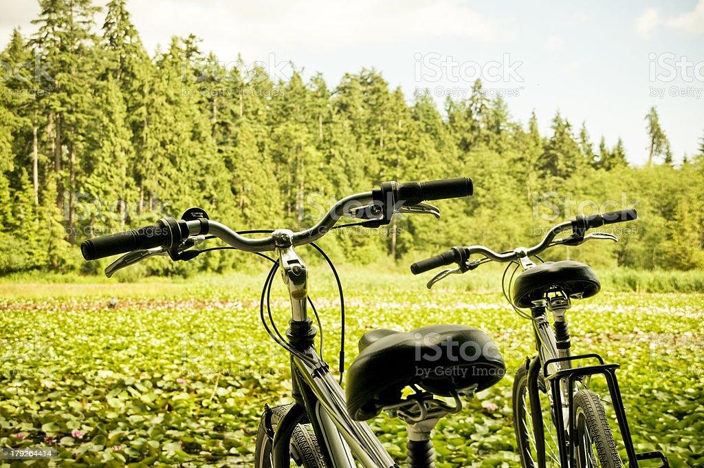Bikes in Nature stock photo
