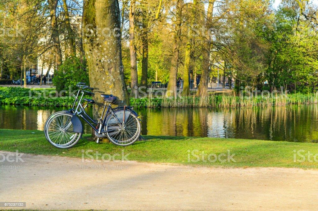 Bikes on Vondelpark, Amsterdam, Netherlands stock photo