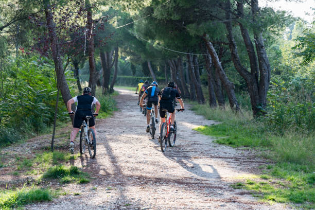 bikes ride in a path inside a forest in italy - abruzzo cycle path foto e immagini stock