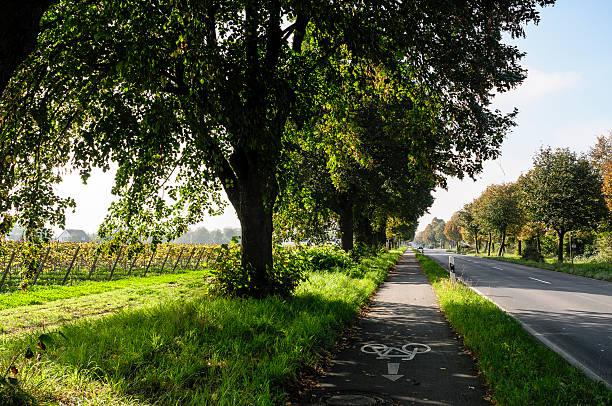 bikeway weiter in nördlicher neben einem road in deutschland - radwege deutschland stock-fotos und bilder