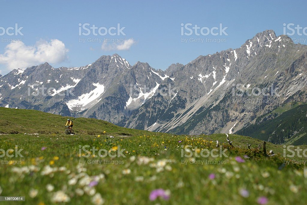Biking In European Alps royalty-free stock photo