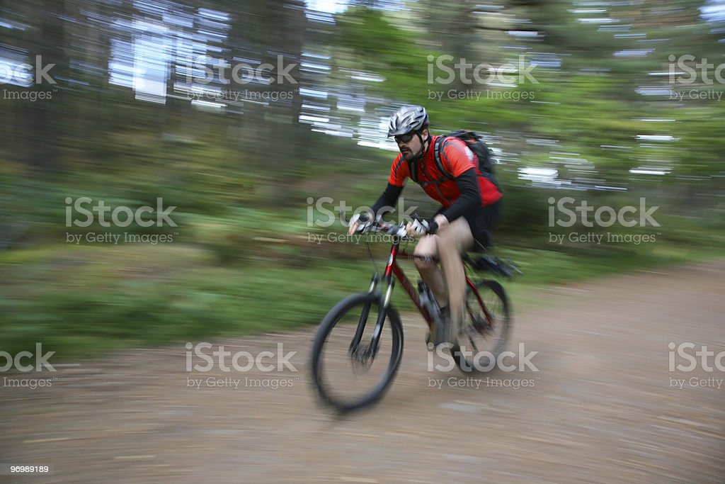 biking in the forest stock photo
