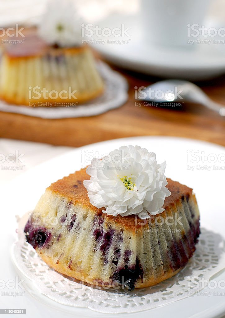 Bilberry muffins royalty-free stock photo