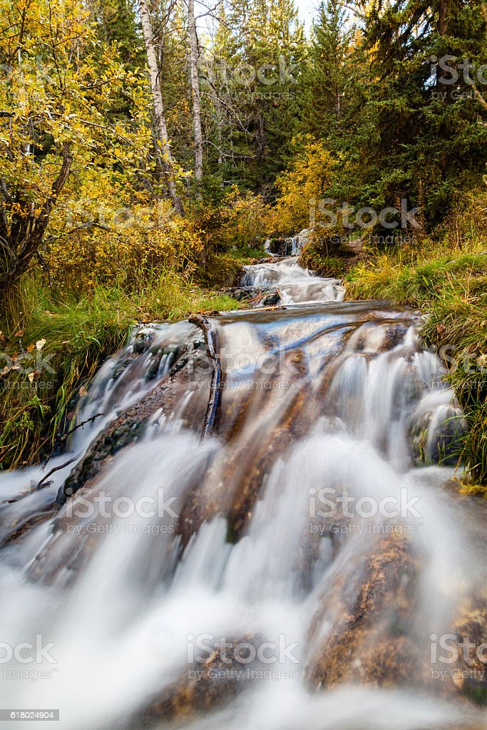 Bill Hill Springs Provincial Park, Alberta, Canada stock photo