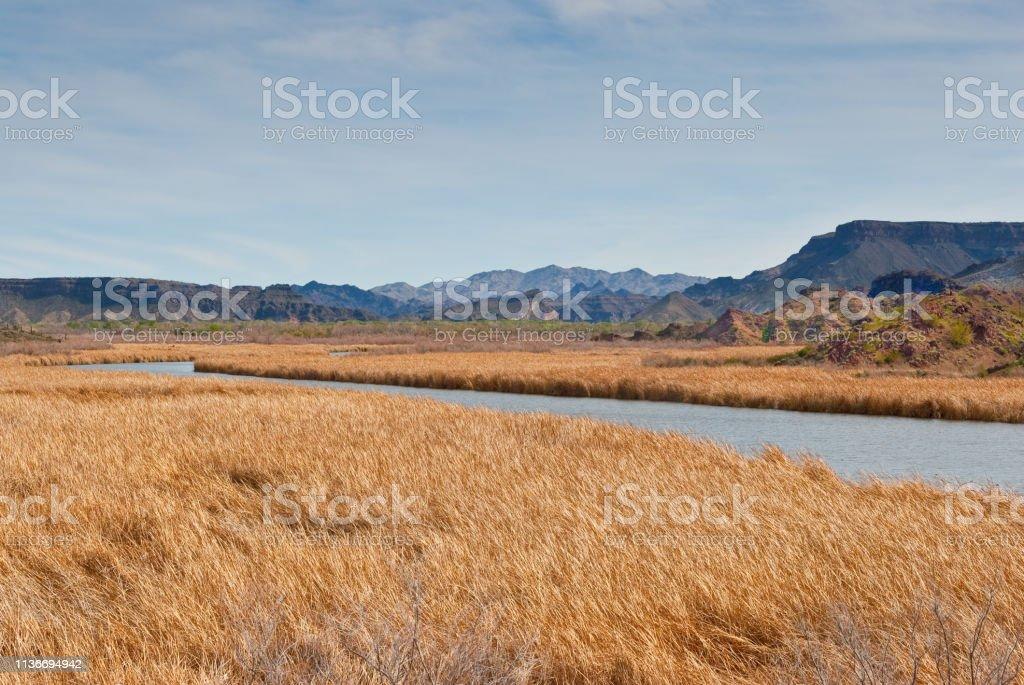 Bill Williams River stock photo