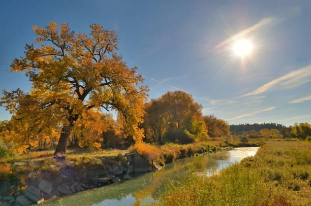 Billings Riverfront Park Canal stock photo
