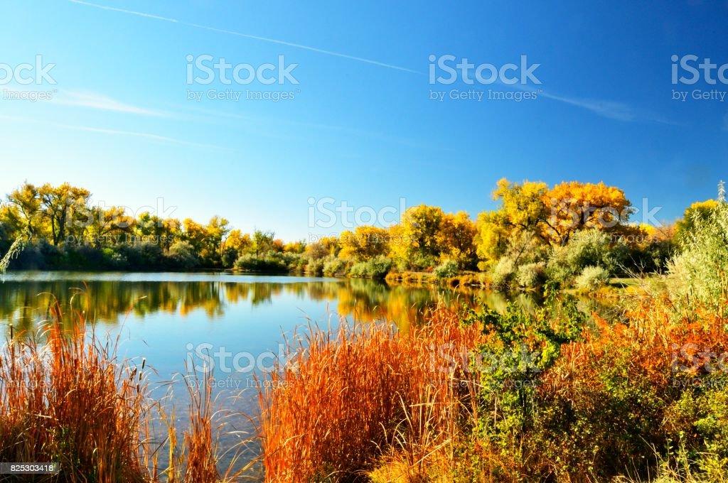 Billings Riverside Park Lake stock photo