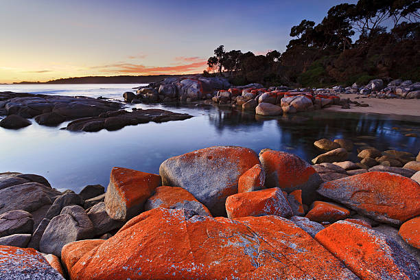 binalong red rocks top - tasmania stock pictures, royalty-free photos & images