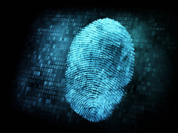 binary code behind a blue digital fingerprint - identity stock photos and pictures